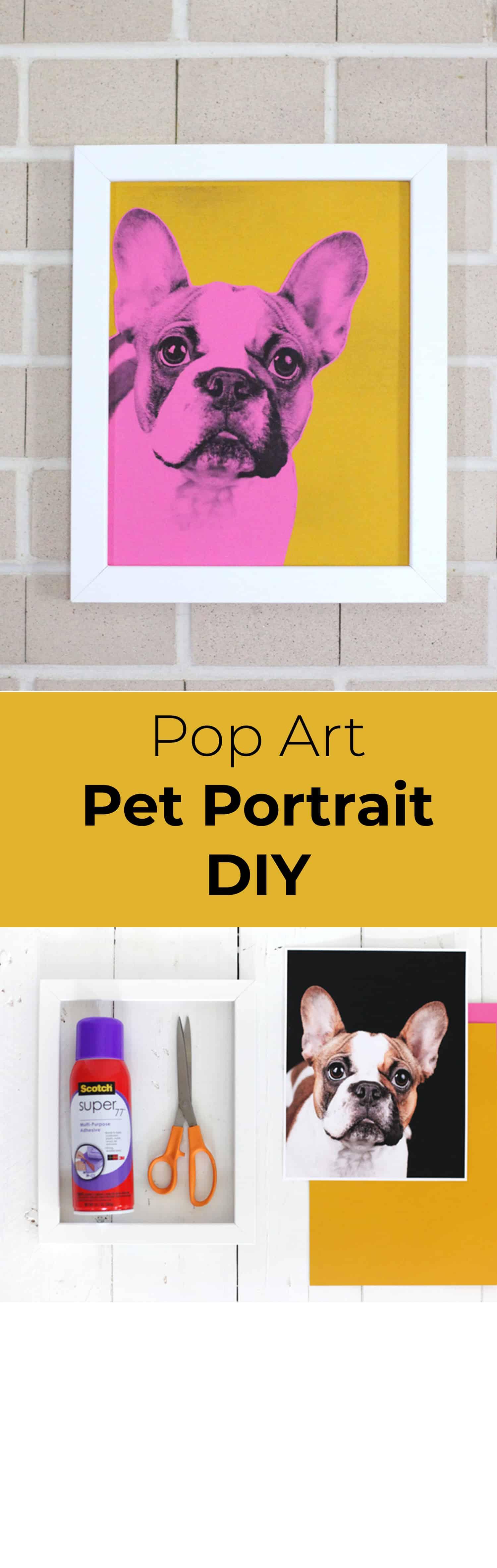 Make Your Own Pop Art Pet Portrait - A Beautiful Mess