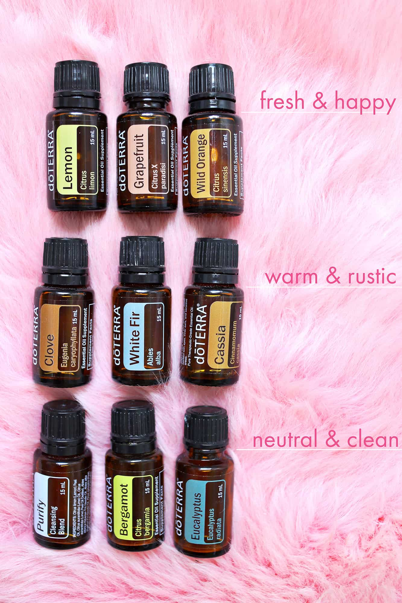 My Favorite Essential Oils To Diffuse At Home A Beautiful Mess