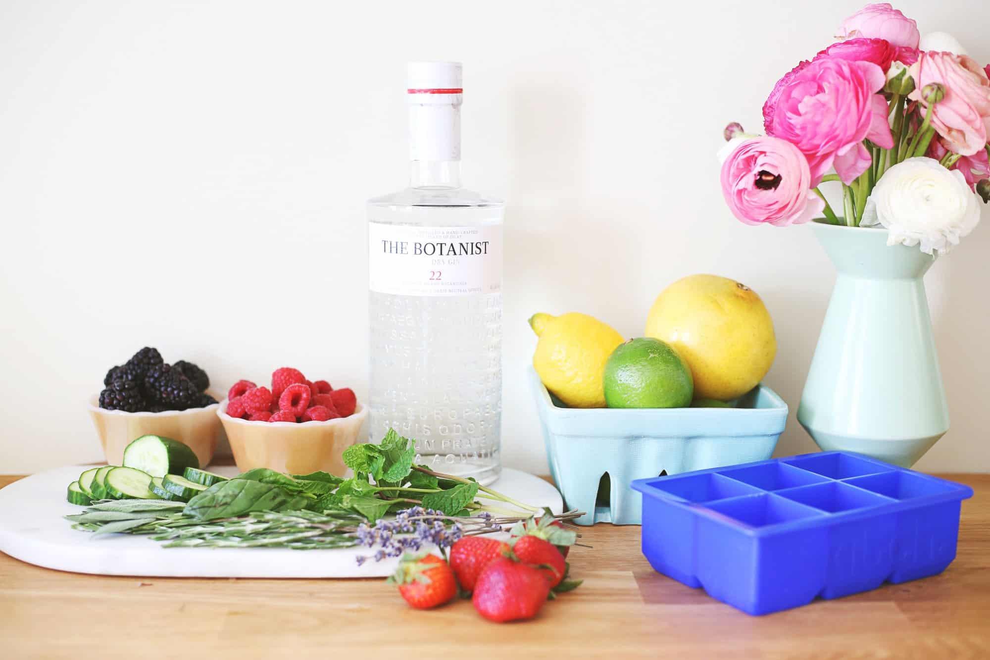 Gin Fix mit infundierten Eiswürfeln