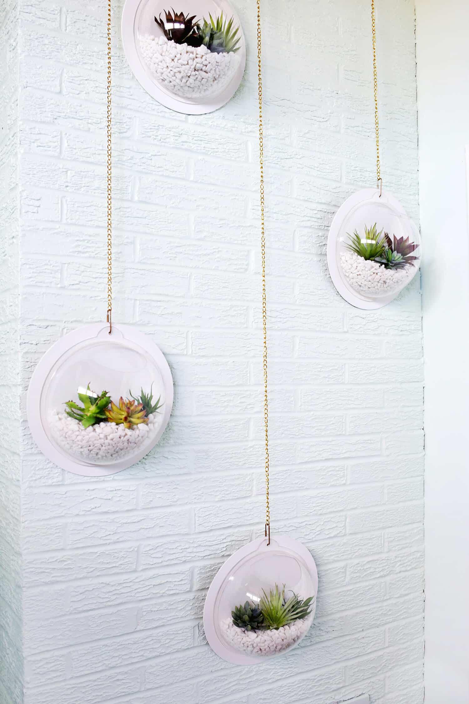 Hängende Terrarium-Wand DIY