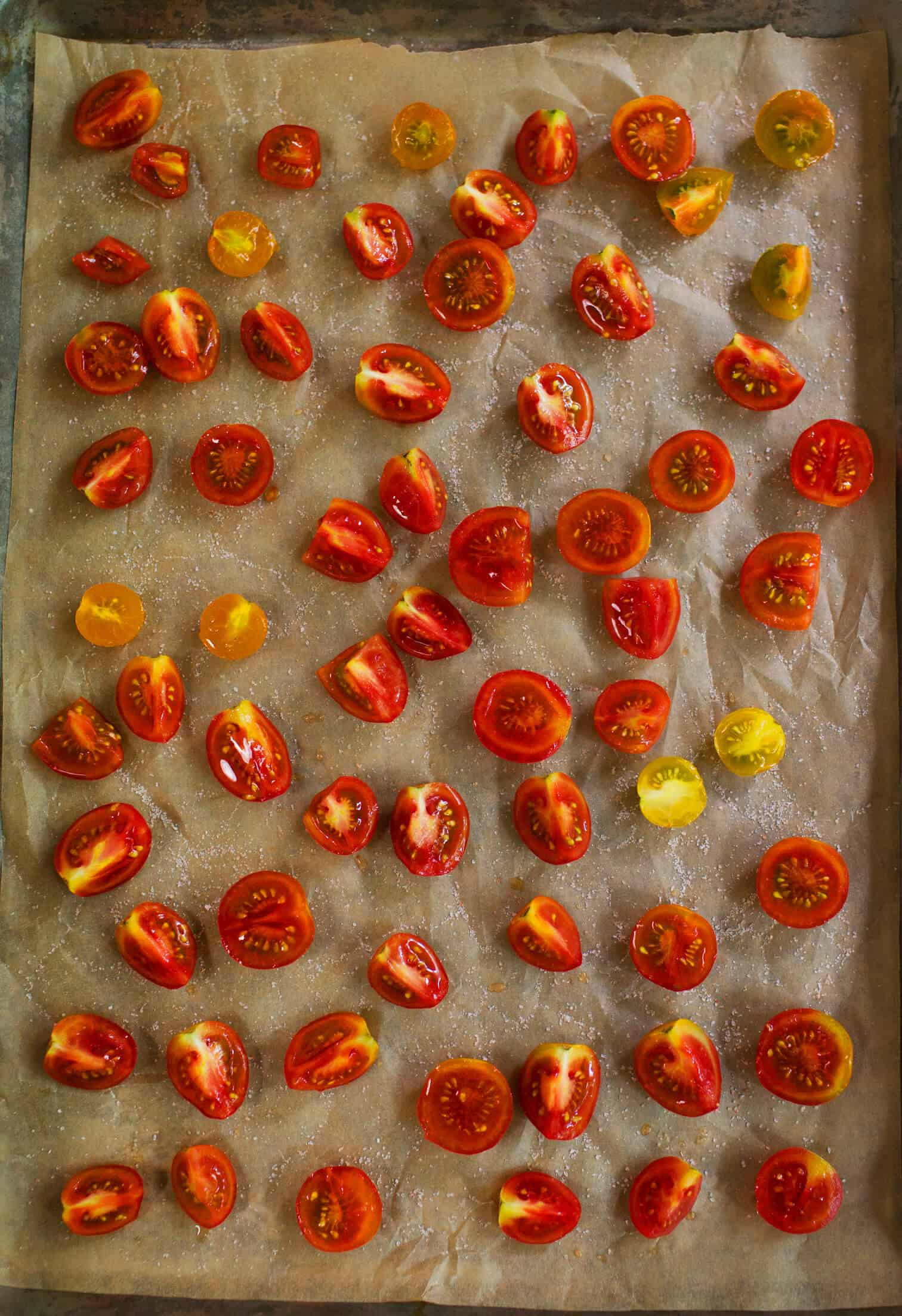 Ofen gebratene Tomaten-, Basilikum- und Mozzarella-Quiche