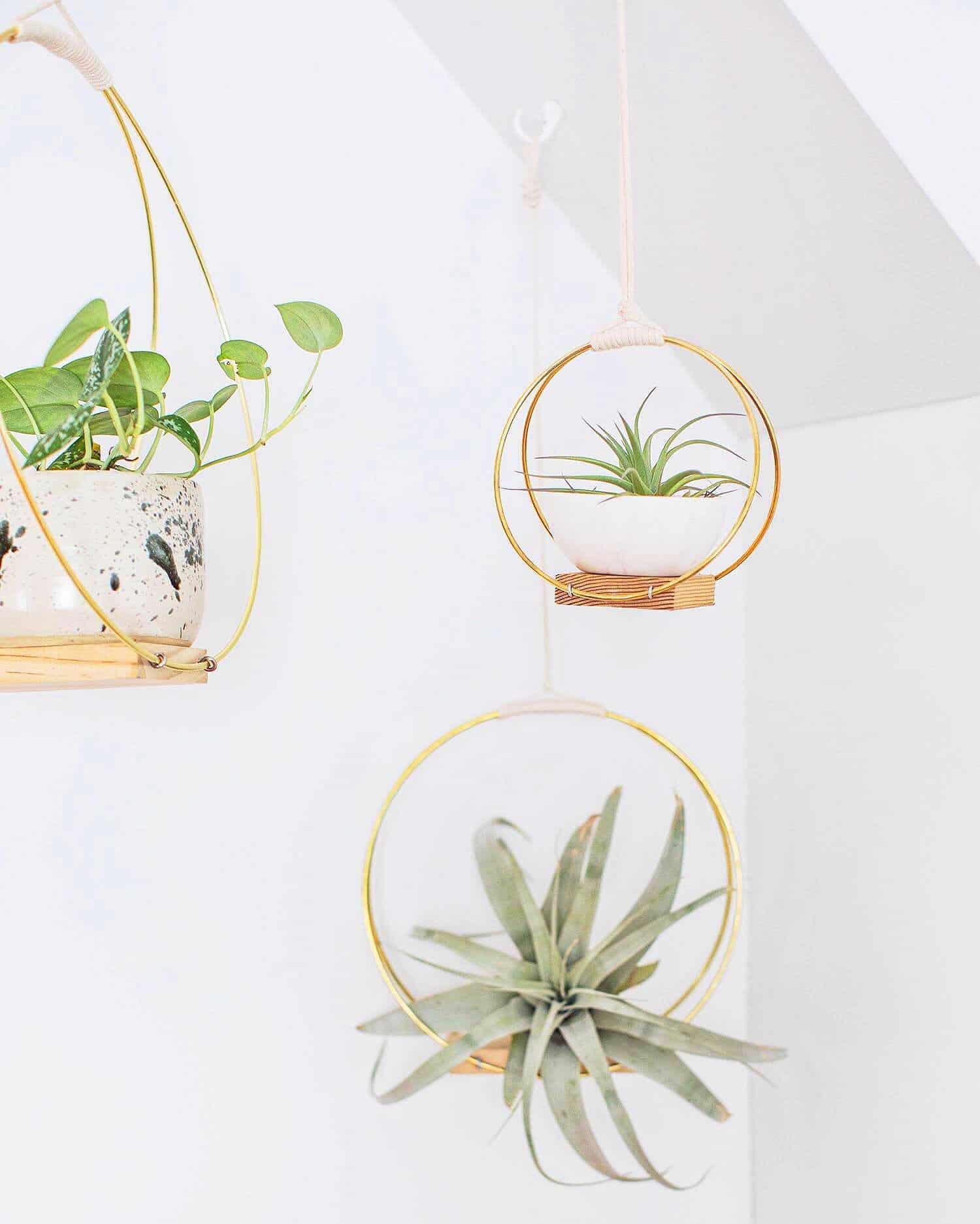 Brass Ring Hanging Planter Diy A Beautiful Mess