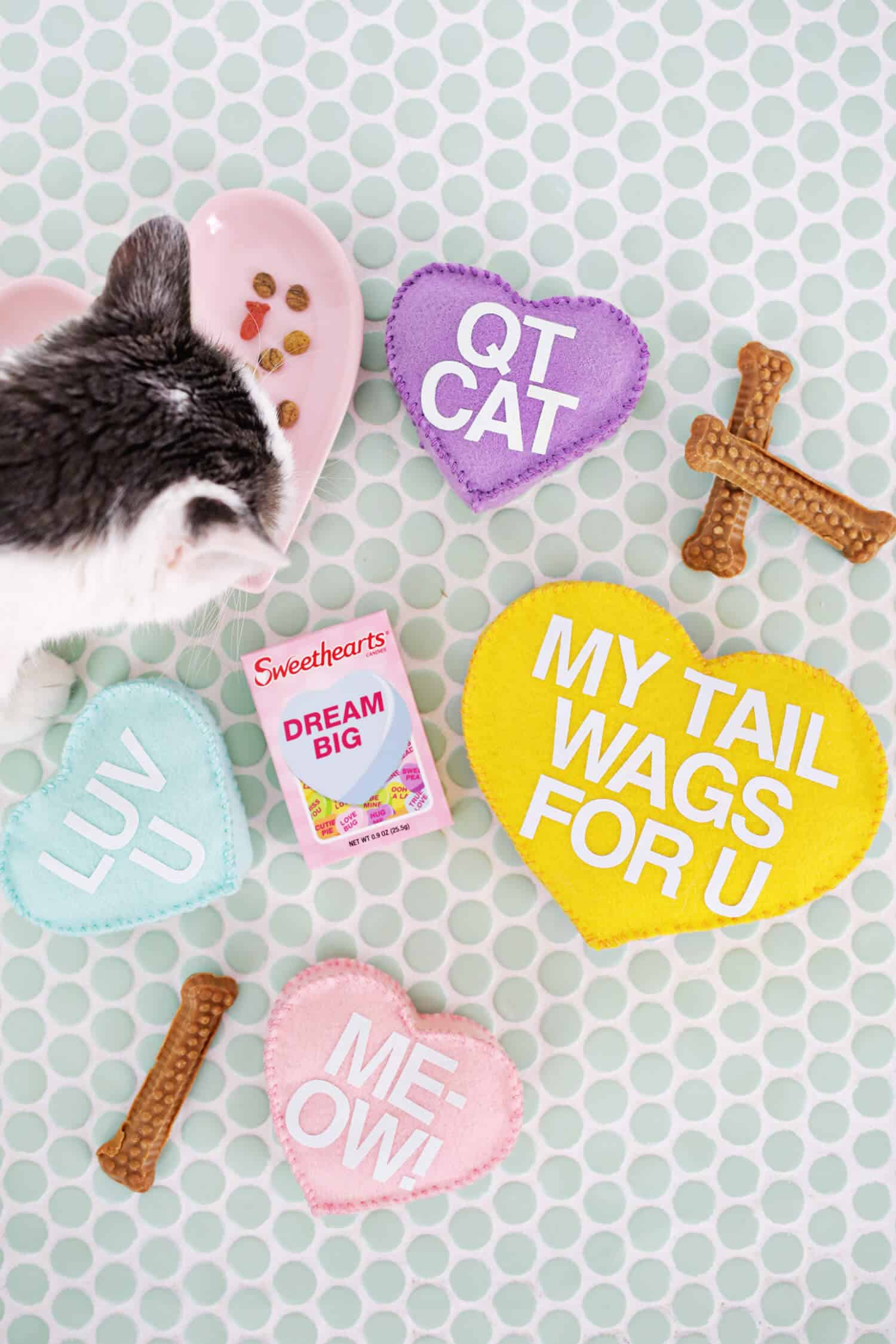 Make your own knit cat bed a beautiful mess conversation heart pet toy diy jeuxipadfo Gallery