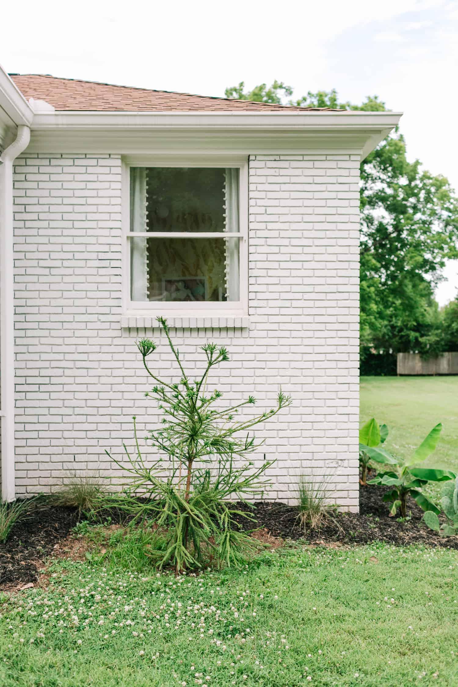 Exterior + Landschaftsgestaltung