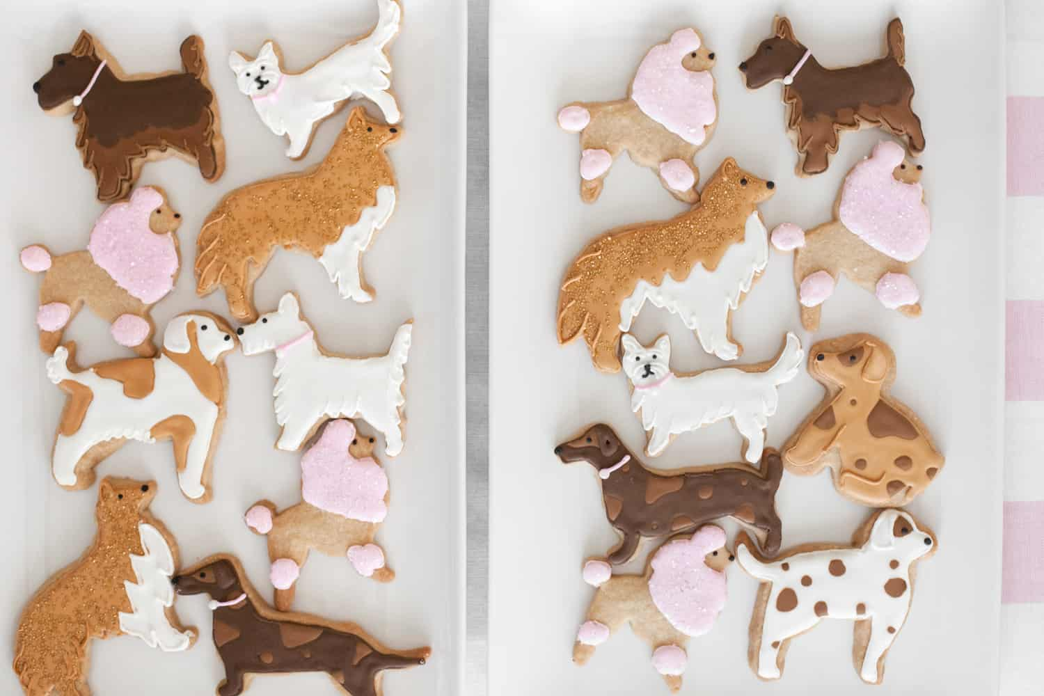 dog cut-out cookies