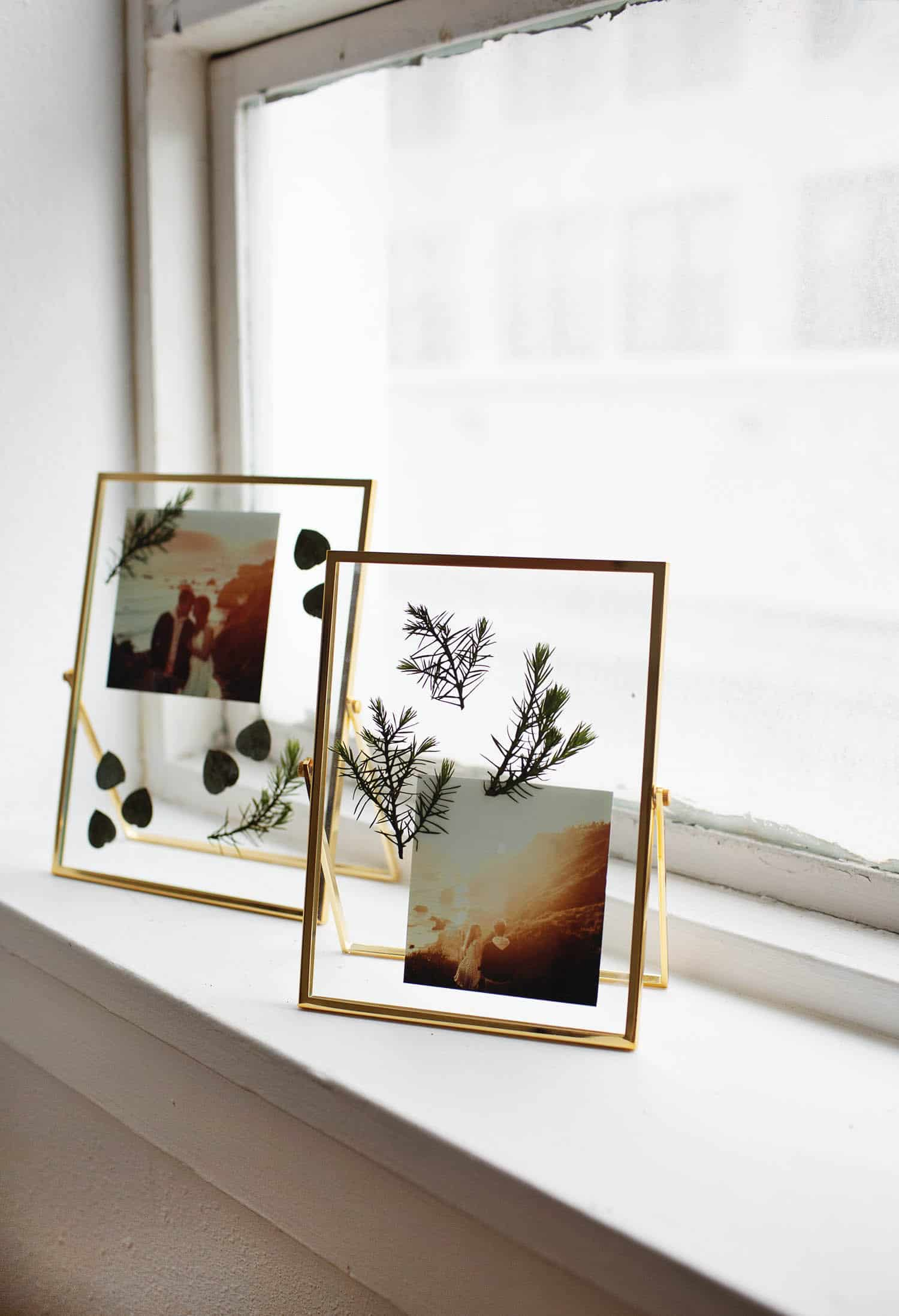 Diy Pressed Plants Photo Frame A Beautiful Mess