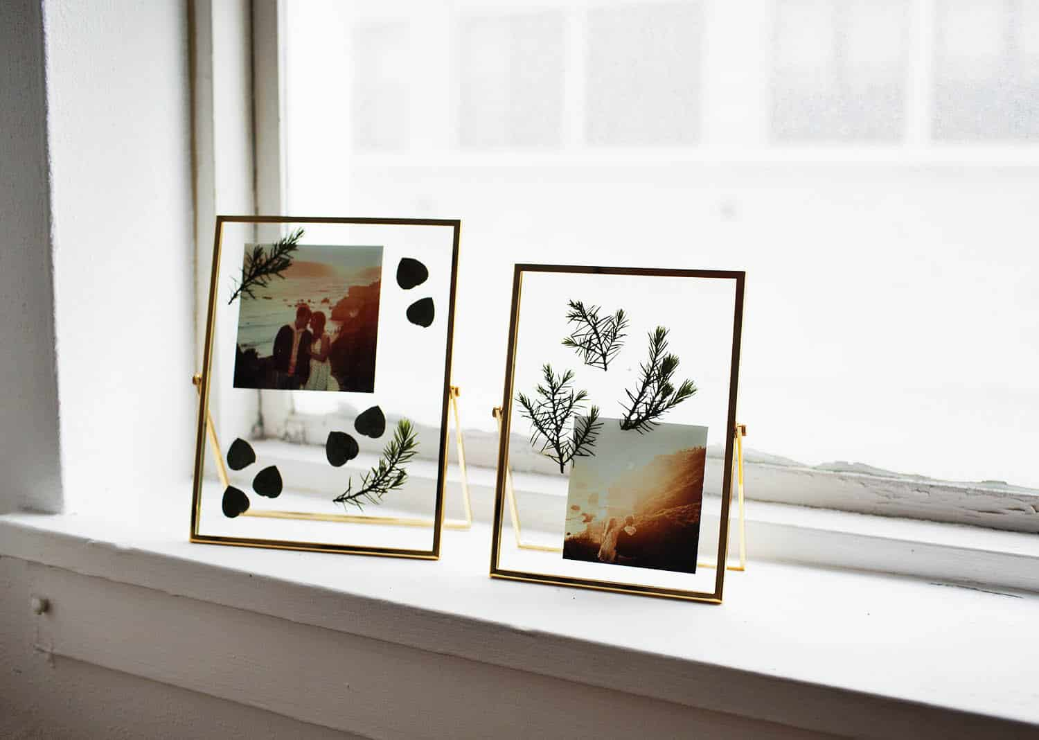 DIY Pressed Plants Photo Frame - A Beautiful Mess