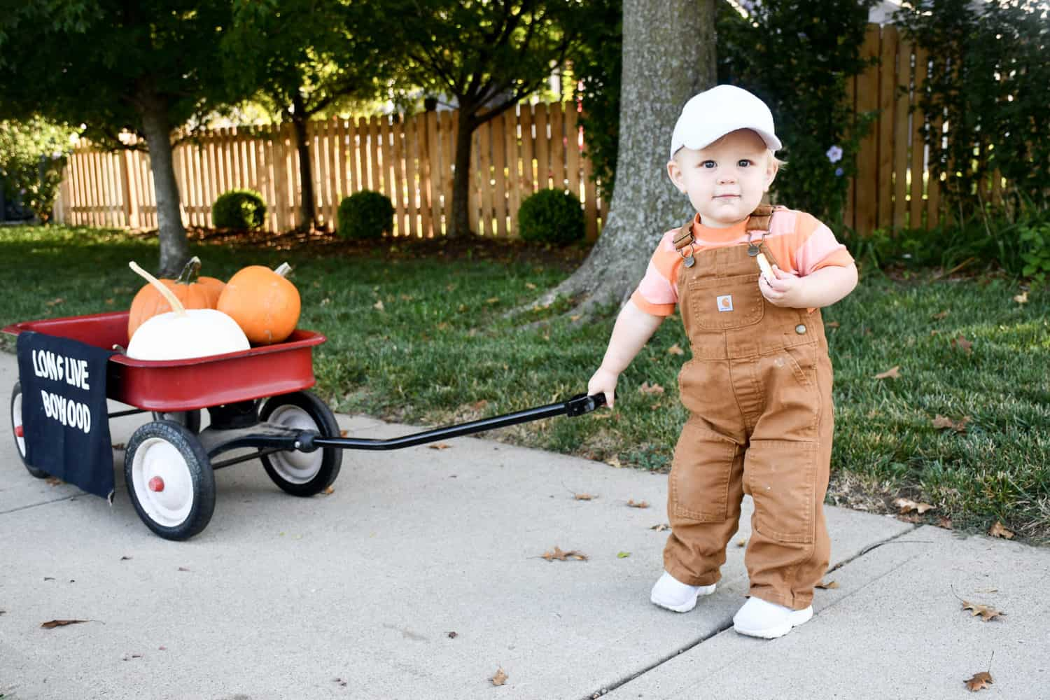 Child pulling wagon with pumpkins in it.