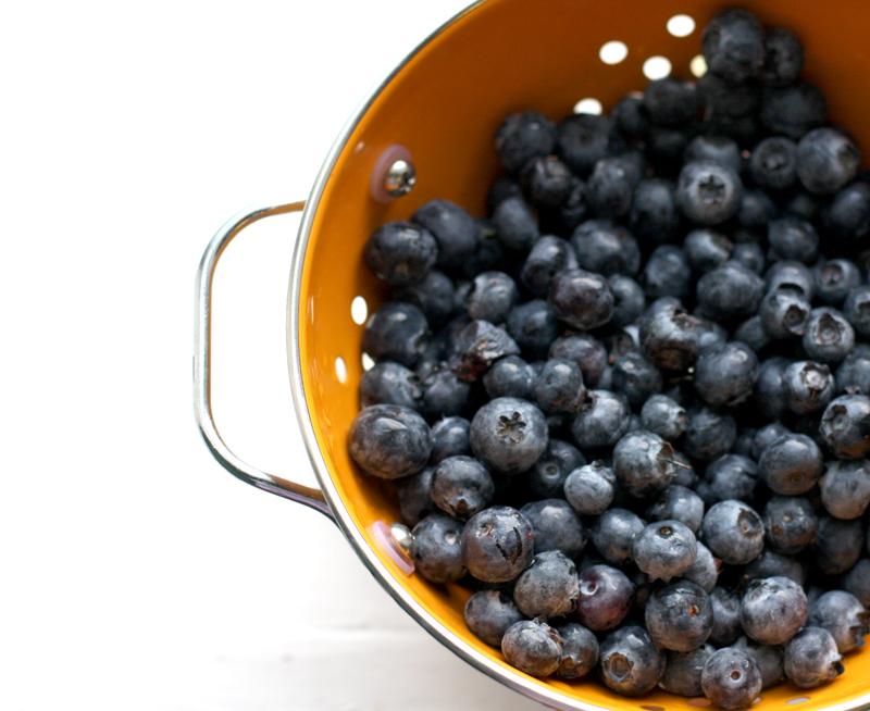 Elsie-blueberries