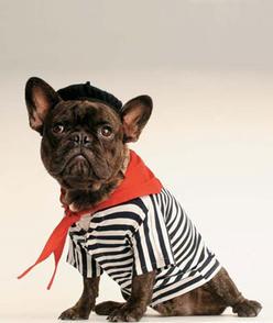 Darling-DIY-Dog-Costumes_topicspage
