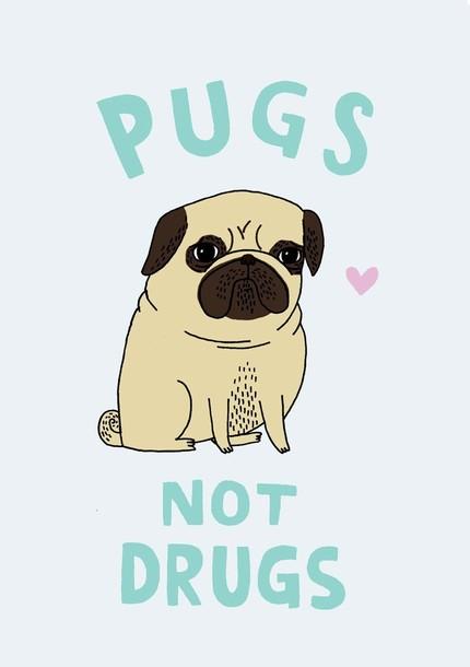 Pugs-not-drugs