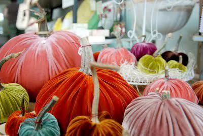 Ink_and_peat_jen_mccabe_velvet_pumpkins_large