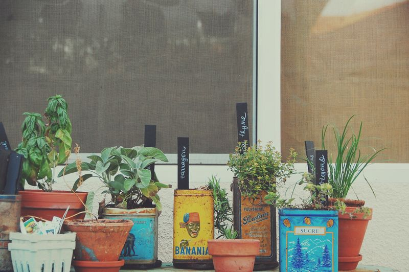 Tin and pots