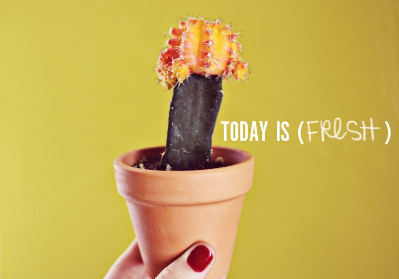 Today is fresh 1