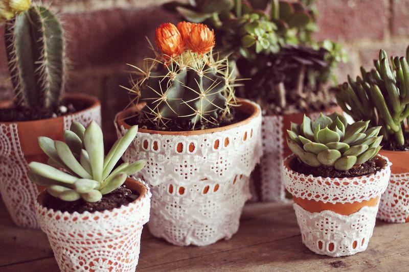 Lace Planter