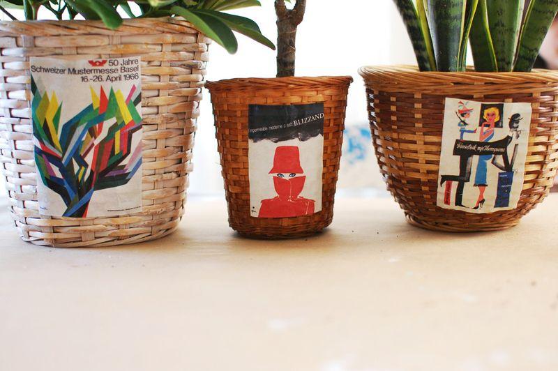 Collage plant basket 1