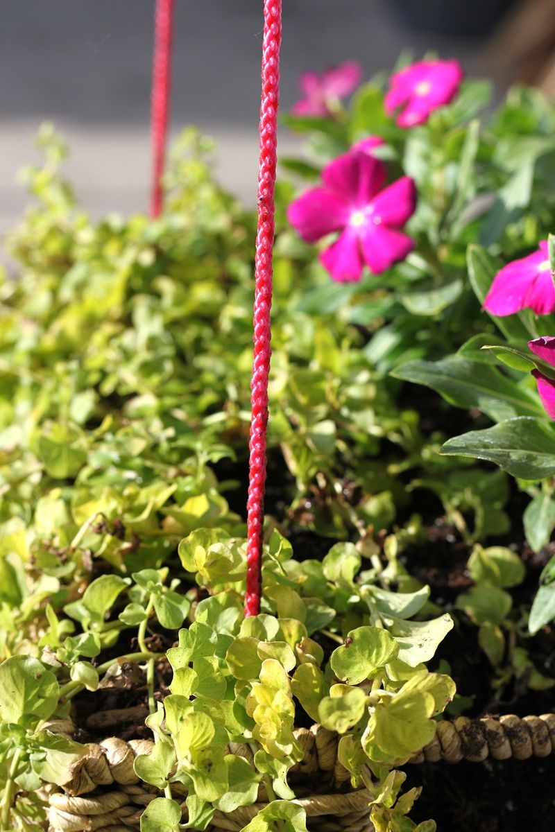 Hanging Basket Garden DIY detail
