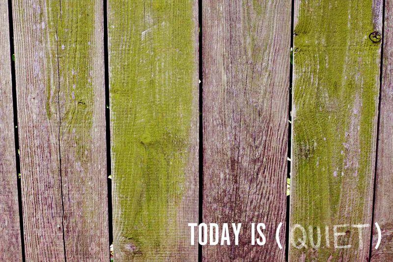 Today is (QUIET)