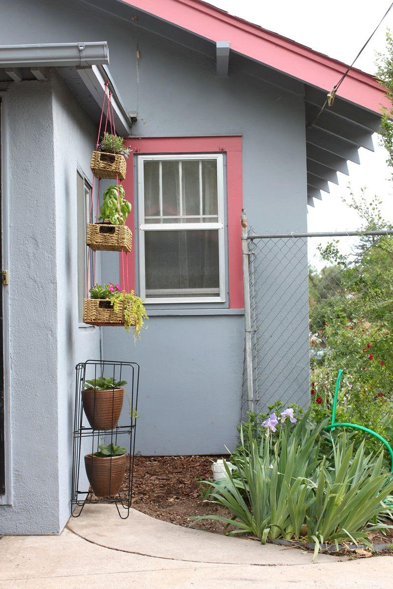 Hanging Basket Garden DIY