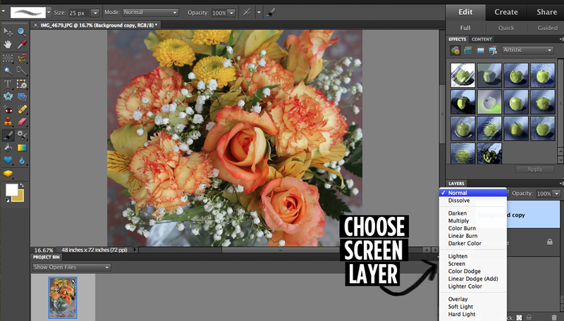 Adobe photoshop elements 2