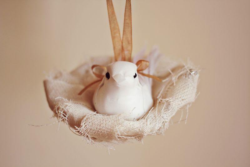 Lovely bird nest DIY