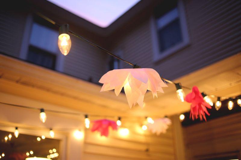 Paper Flowers DIY