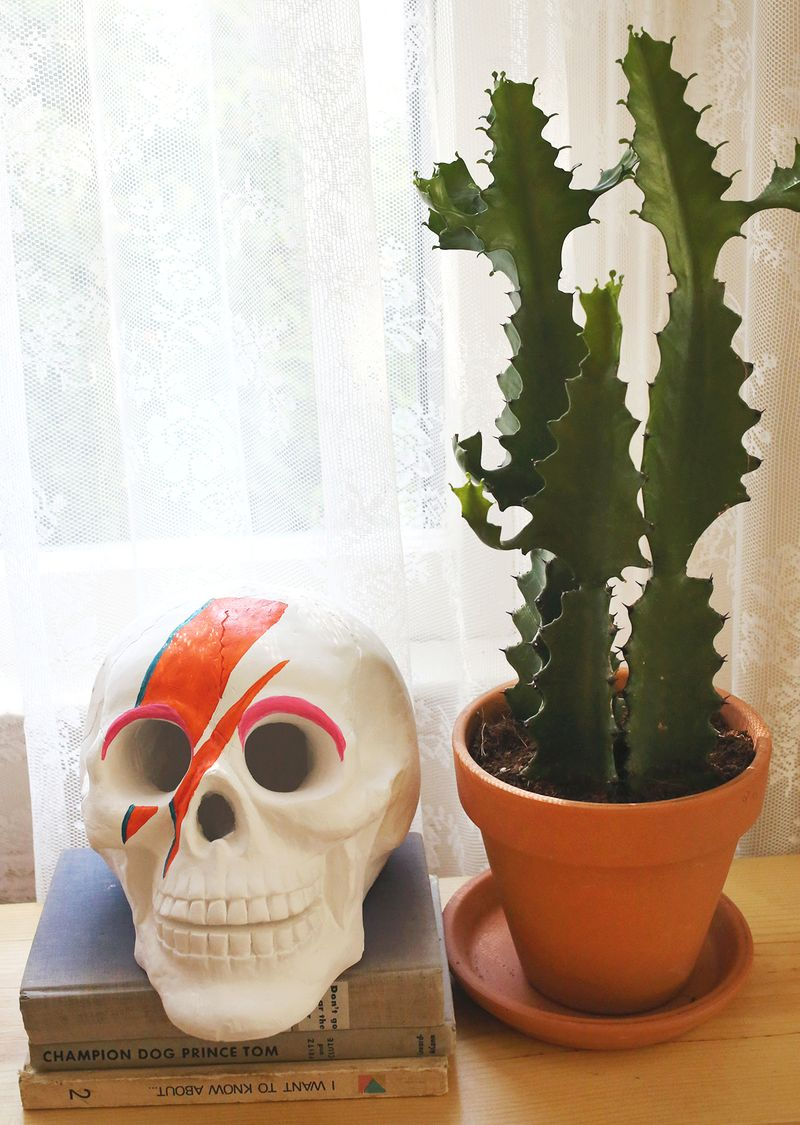 David Bowie inspired skull for halloween decor!