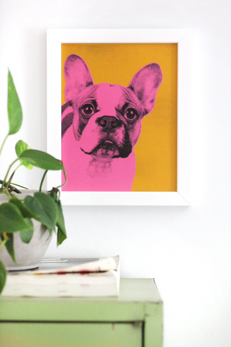 Pop Art Pet Portraits— Inspired by Andy Warhol and easy to make!