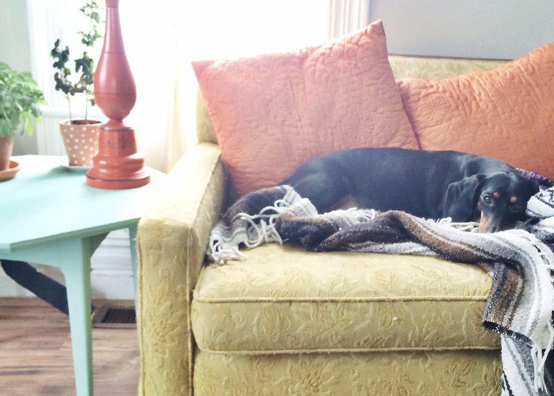 Davenport couch