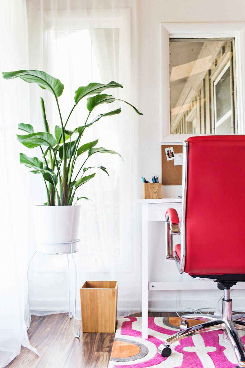 Emma's ABM office