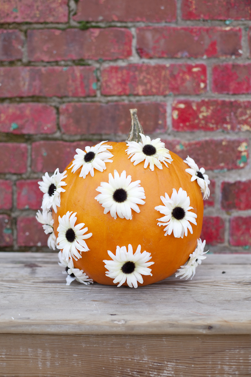 floral pumpkin decorating