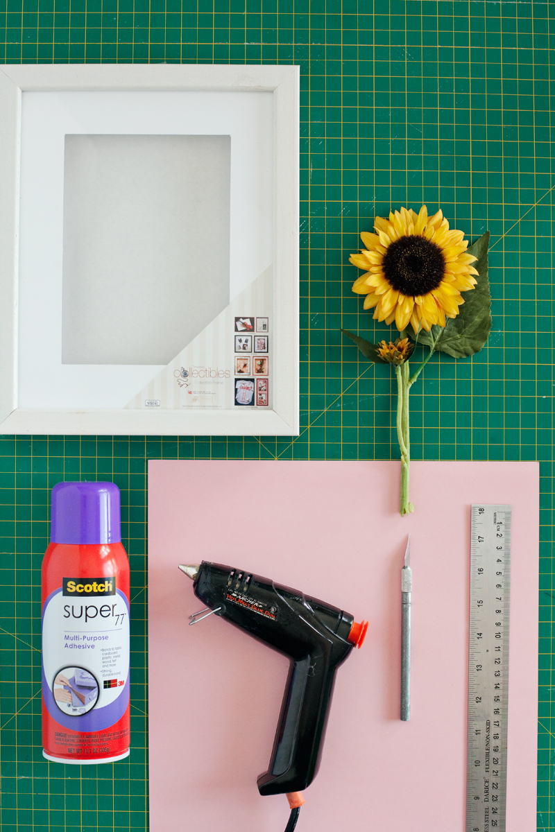 Make these simple floral shadow boxes to give your walls a bold and beautiful touch of Spring.