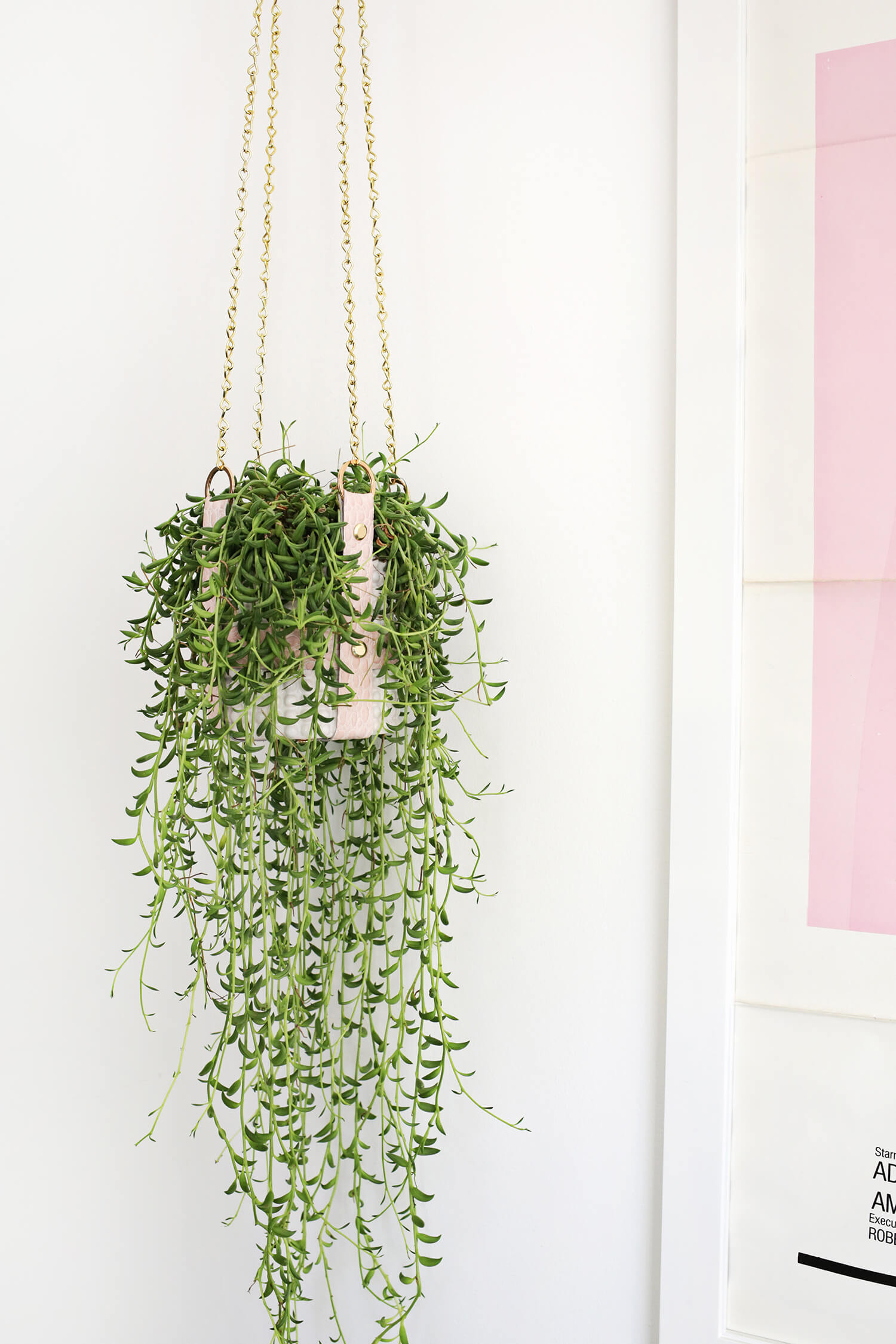 Hanging Leather Strap Planter Diy A Beautiful Mess