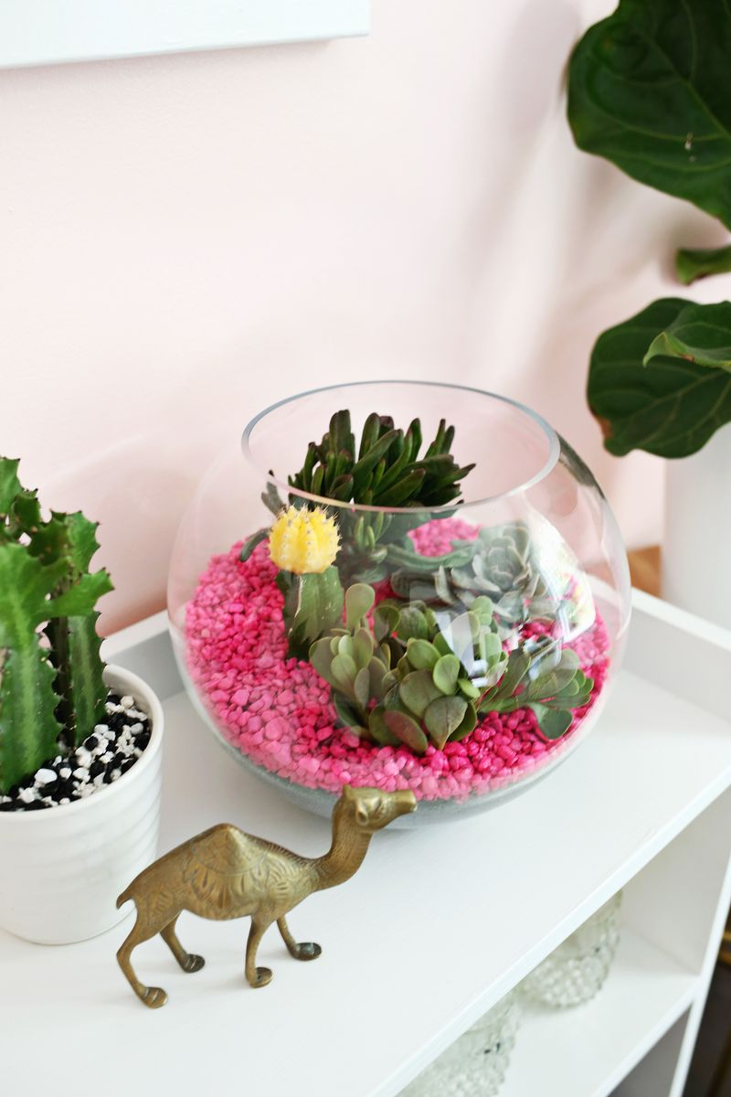 Try This! Aquarium Rock Planter (click through for more)