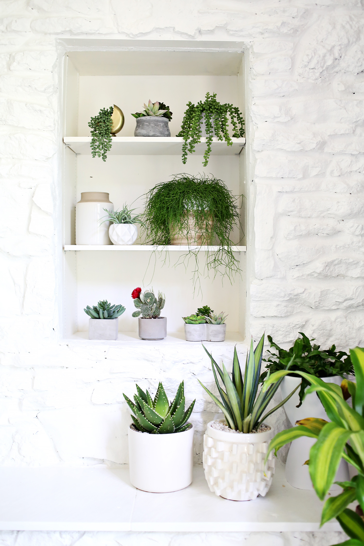Are You Faux Real How To Find The Most Convincing Faux Plants A Beautiful Mess